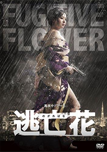 蒼井そら(AV女優)