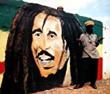 Hot walking Jamaica―ジャマイカの熱い日 (Bee books) 画像