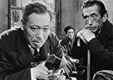 Criterion Collection: Ikiru / [Blu-ray] [Import] 画像