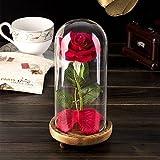 SUPSUN 美女と野獣のバラ 魅惑的な赤いバラ 秋の花びら ガラスドーム 木製ベースギフト 記念日 結婚式 誕生日プレゼント