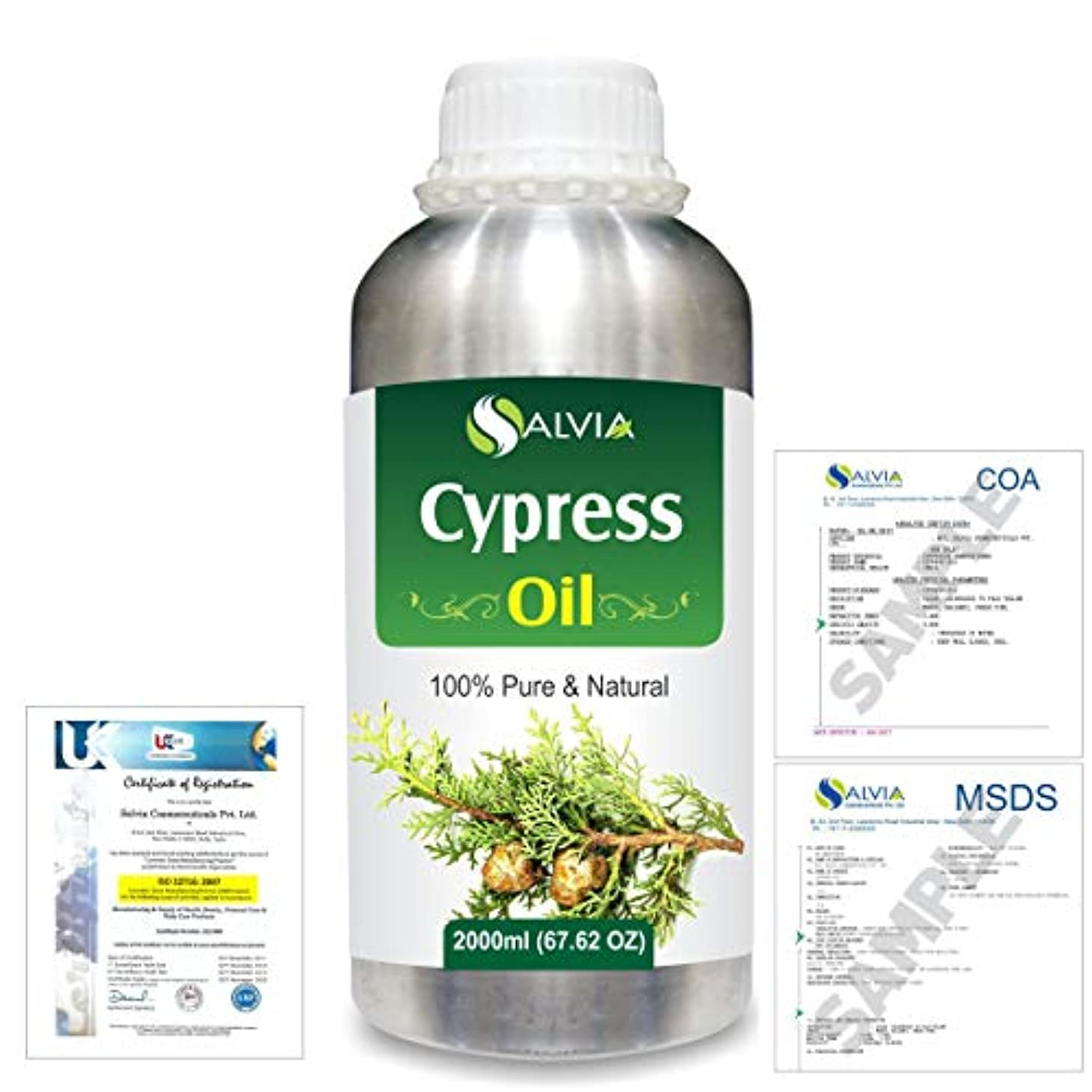 ほこりっぽいラバ日Cypress(Cupressus sempervirens) 100% Natural Pure Essential Oil 2000ml/67 fl.oz.