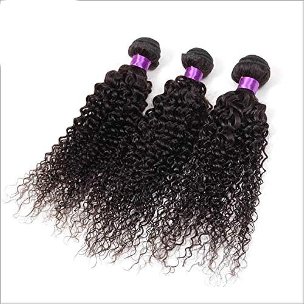 成功した従順な真っ逆さまYESONEEP ブラジルの変態巻き毛の束人間の髪の束3バンドルナチュラルブラックカラー複合毛レースのかつらロールプレイングかつら (色 : 黒, サイズ : 16 inch)