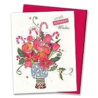 Madison Park 【クリスマス】 スモール グリーティングカード (花×キャンディケイン) NWX8