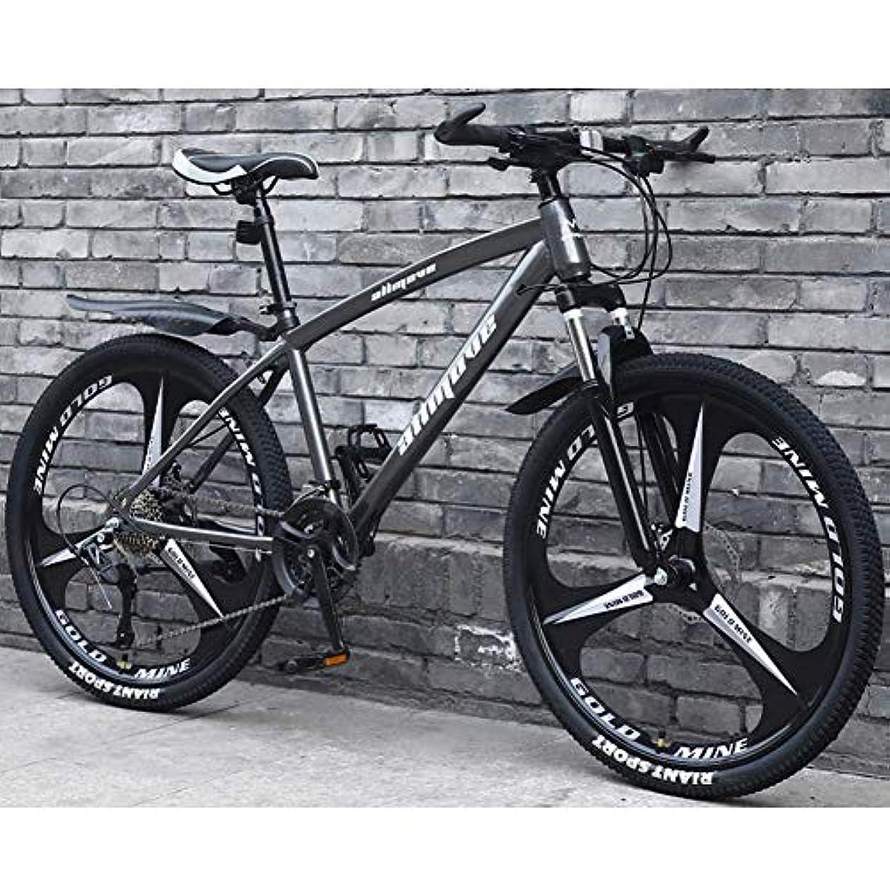 コロニアル無駄な手がかりマウンテンバイク自転車、軽量炭素鋼フレームダブルディスクブレーキ24速度可変速度マウンテンバイク男性と女性ロードバイク、グレー、24インチ