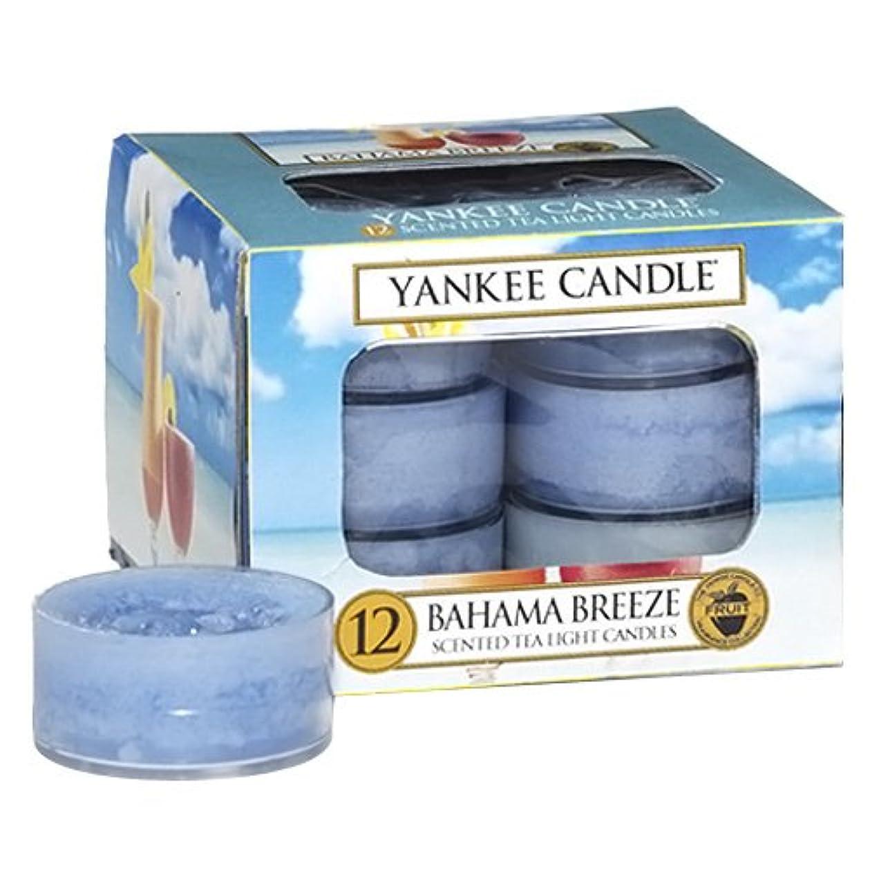 可塑性アウトドア呼吸するYankee Candle Bahama Breeze、フルーツ香り Tea Light Candles ブルー 1205310