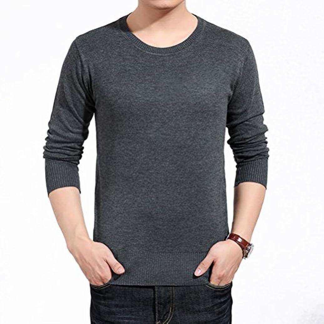 聴覚樫の木空港輝姫 ブラウス 長袖 無地 トップス ボーイズ メンズ ポロシャツ シャツ ラウンドネック カジュアル カットソー シンプル ファッション (XL, グレー)