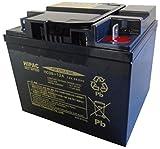 HITACHI [ 日立化成株式会社 ] 電動車バッテリー [ シールド型鉛蓄電池 ] HC38-12