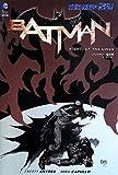 バットマン:梟の夜 / スコット・スナイダー のシリーズ情報を見る