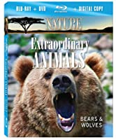 Nature: Extraordinary Animals: Bears & Wolves [Blu-ray] [Import]
