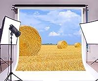 laeacco 6x 6ftビニール背景写真背景Hay Bale Rural Straw Meadow WheatイエローGolden HarvestフィールドCountryside Nature LandscapeブルーSky Backdropフォトスタジオ小道具