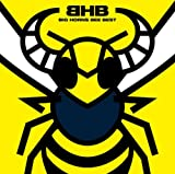 BIG HORNS BEE BEST