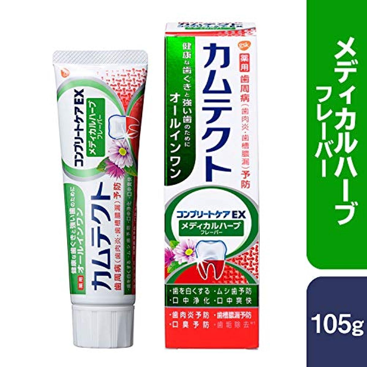 スパン晩ごはん立場[医薬部外品] カムテクト コンプリートケアEX メディカルハーブフレーバー 歯磨き粉 105g 105g