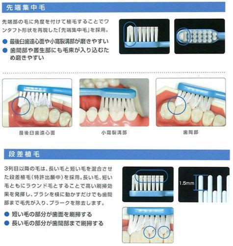 ジーシー GC ルシェロ B-10 歯ブラシ 5本 (M(ふつう))