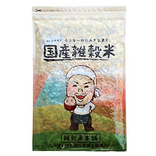 米 雑穀 雑穀米 国産 栄養満点23穀米 2kg(500g x4袋) 国産黒米 もち麦 送料無料 ※一部地域を除く 雑穀米本舗