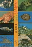 東海の魚―伊勢湾と熊野灘を中心に (1979年)