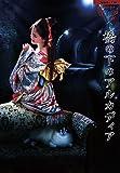 夜会VOL.18「橋の下のアルカディア」[DVD]