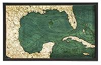 メキシコ湾のサービングトレイ 20 x 13インチ