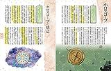 CD-ROM付き いちばんやさしい西洋占星術入門 画像