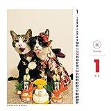 トライエックス 日めくりニャンコ!2019年 猫の日めくりカレンダー 画像
