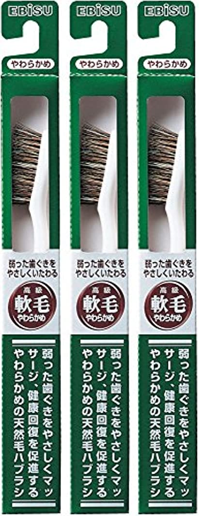 現代ダッシュ究極のエビス 弱った歯ぐきをやさしくいたわる 軟毛 350ハブラシ  3本組