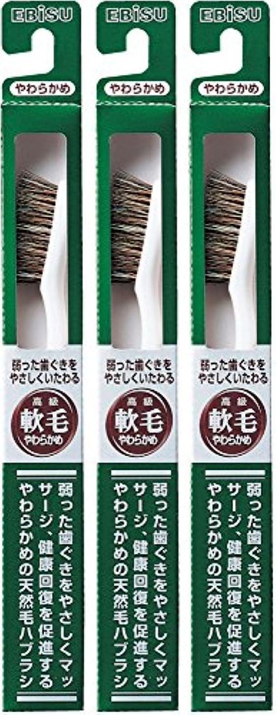 禁輸ポテト事業内容エビス 弱った歯ぐきをやさしくいたわる 軟毛 350ハブラシ  3本組