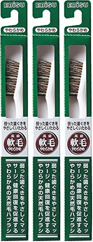 バッチ強化批判的にエビス 弱った歯ぐきをやさしくいたわる 軟毛 350ハブラシ  3本組