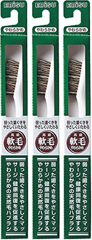 批判する不測の事態料理をするエビス 弱った歯ぐきをやさしくいたわる 軟毛 350ハブラシ  3本組