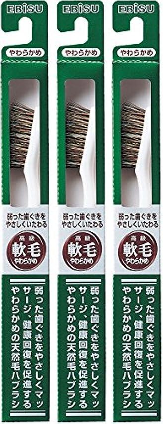 サイト高潔なガチョウエビス 弱った歯ぐきをやさしくいたわる 軟毛 350ハブラシ  3本組