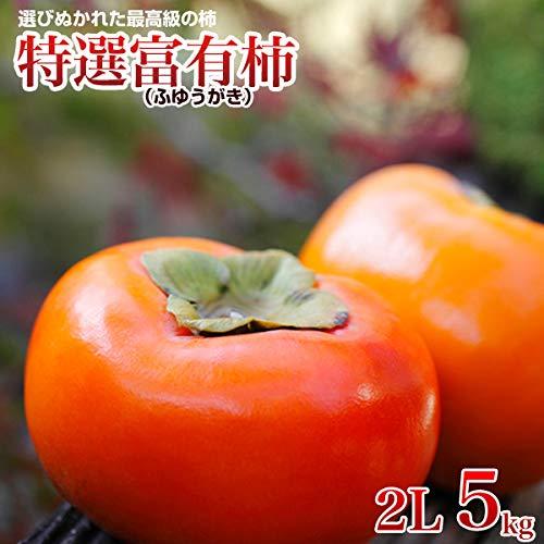 柿 特選富有柿 5kg 2L 18玉 赤秀 贈答用 柿 ふゆ柿 福岡産