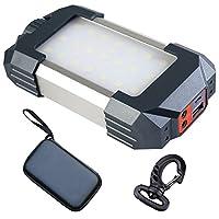 雑貨の国のアリス 充電式LEDライト LED21個 ダイヤル式調光 USBポート1つ SOSモード搭載 収納ケース付 吊り下げフック付 [並行輸入品]
