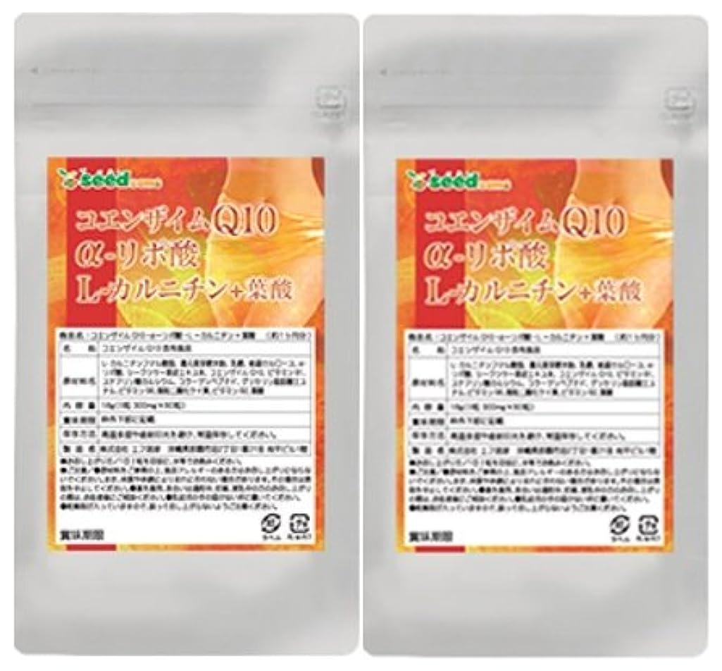 怒り小川夕食を食べるコエンザイムQ10 α-リポ酸 L-カルニチン + 葉酸 (約6ヶ月分/360粒)