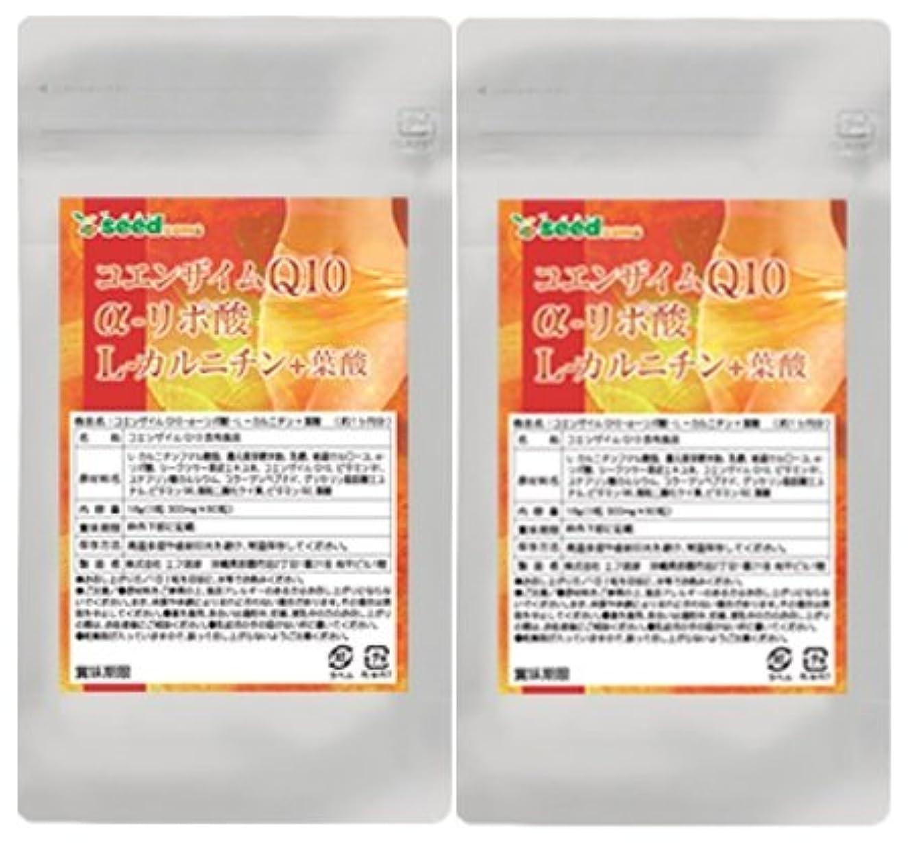 ディレイ聴衆変えるコエンザイムQ10 α-リポ酸 L-カルニチン + 葉酸 (約6ヶ月分/360粒)