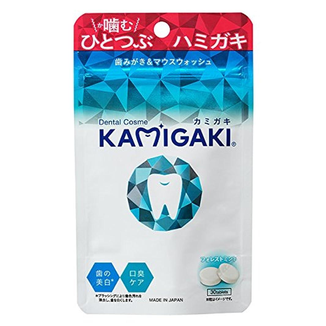 魔術師衝撃論理KAMIGAKI(カミガキ)