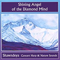 Shining Angel of the Diamond Mind