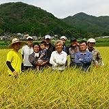 【兵庫県産】丹波篠山たぶち農場のこしひかり(特別栽培米)27年度産 白米5㎏