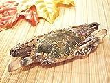 わたりがに ラウンド 約100g バーレーン産 ワタリガニ 渡り蟹