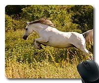 マリスマット、獣の騎兵郷、マリスマット