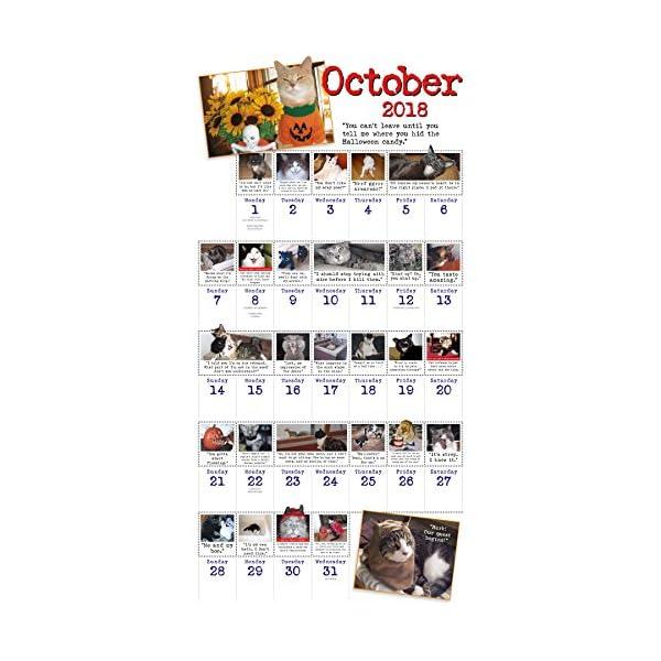 Bad Cat 2018 Calendarの紹介画像5