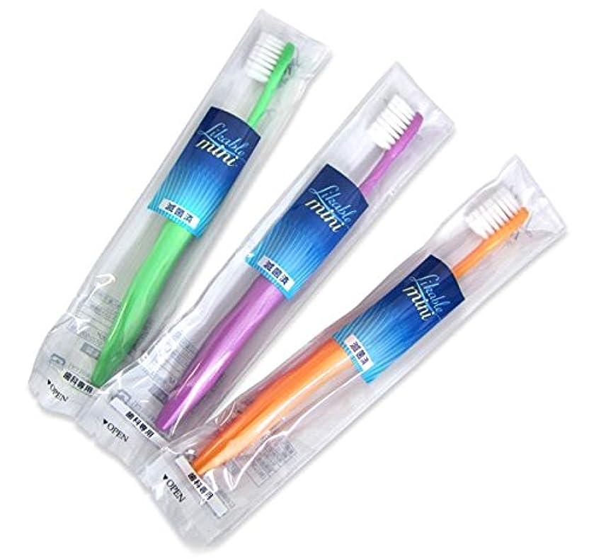 硬いスワップ中間ライカブル ミニ歯ブラシ 12本入