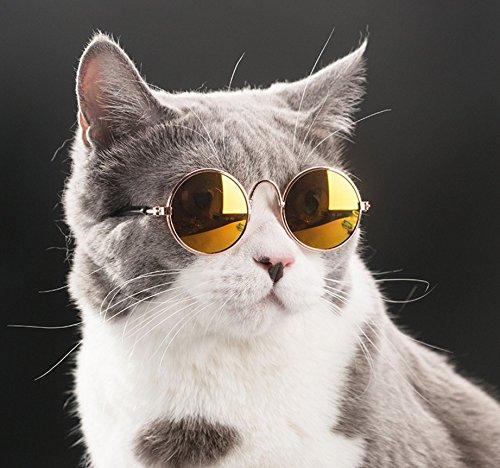 QZSKY 猫眼鏡 猫 日焼け対策 保護 ファッションペット...