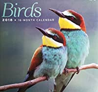 2018 16-Month Birds Wall Calendar [並行輸入品]
