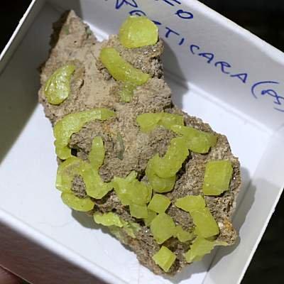 イタリア・マルケ州産 母岩付き硫黄 約26g ケース入り