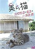 美ら猫(ちゅら猫)竹富島編 [DVD]
