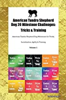 American Tundra Shepherd Dog 20 Milestone Challenges: Tricks & Training American Tundra Shepherd Dog Milestones for Tricks, Socialization, Agility & Training Volume 1
