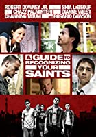 A Guide to Recognizing Your Saints [DVD]