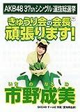 AKB48 公式生写真 37thシングル 選抜総選挙 ラブラドール・レトリバー 劇場盤 【市野成美】