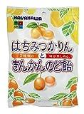 早川製菓 はちみつかりんときんかんのど飴 100g×20袋