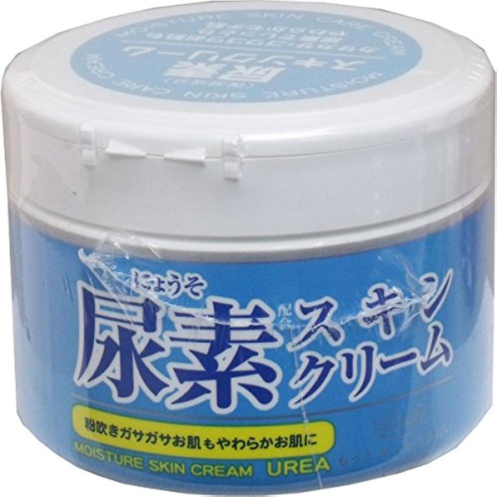 文法広範囲に土ロッシモイストエイド 尿素スキンクリーム × 10個セット