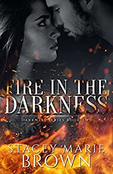 Fire In The Darkness (Darkness Series Book 2) by [Brown, Stacey Marie]