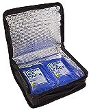 スケーター 保冷 ランチバック 1段  弁当箱 600ml~900ml用 保冷剤 2個付